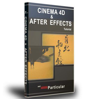 C4D+AEアニメーションセット